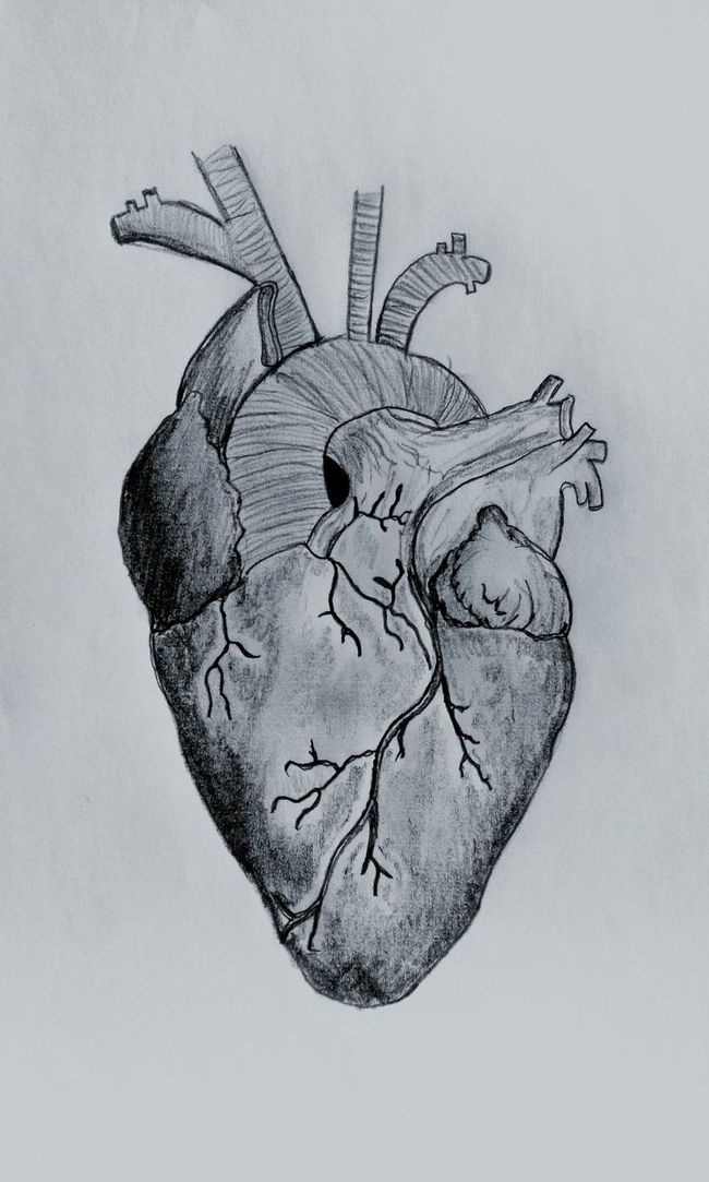 Human Heart Heart Beating Sad Grey Spirit Black & White Photography Drawing Pencilart My Draw ♥ Lonley Beautiful Sound Unhappy Love