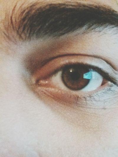 Brown Brown Eyes Colors Boy !!