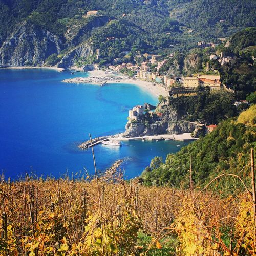Life is travelling the world... Cinqueterre Landscape Breathtaking Vineyard