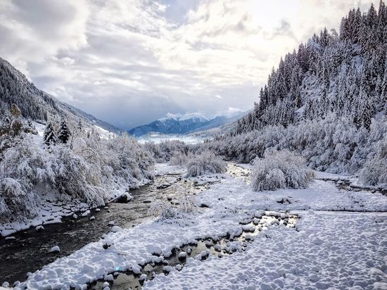 Beautifully Organized Cold Temperature Winter Snow Beauty In Nature Landscape