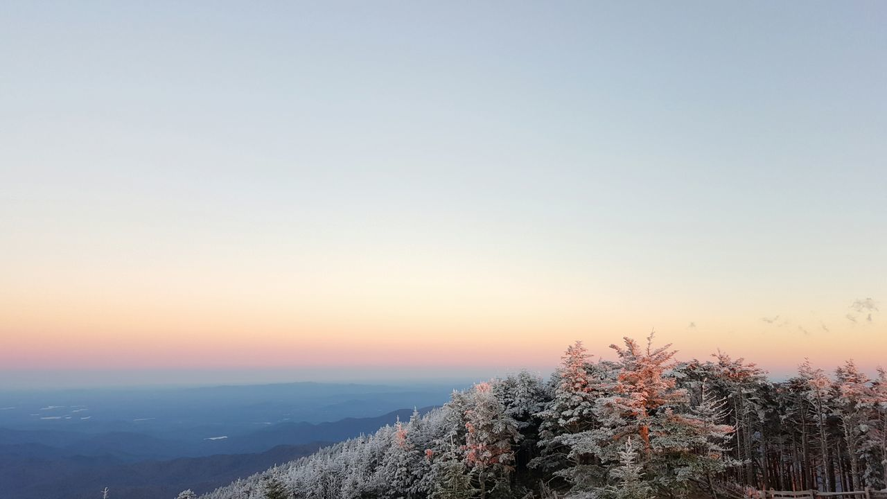 Tree Nature Sunset Tranquility Scenics Sky No People Outdoors Beauty In Nature Horizontal Mountain Evening Frost Blue Ridge Mountains Rime Ice Heavy Frost Winter Fall Horizon at Mount Mitchell Mount Mitchell State Park North Carolina United States