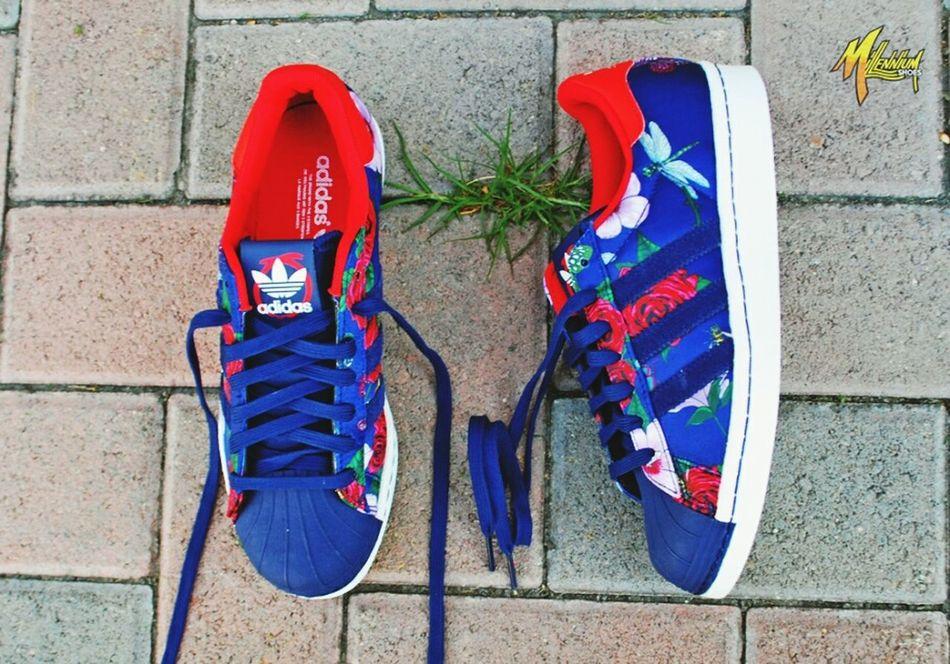 Must have!!.. Adidasoriginals AdidasLover❤ Adidasgirl Adidasswagg LoveThem  First Eyeem Photo