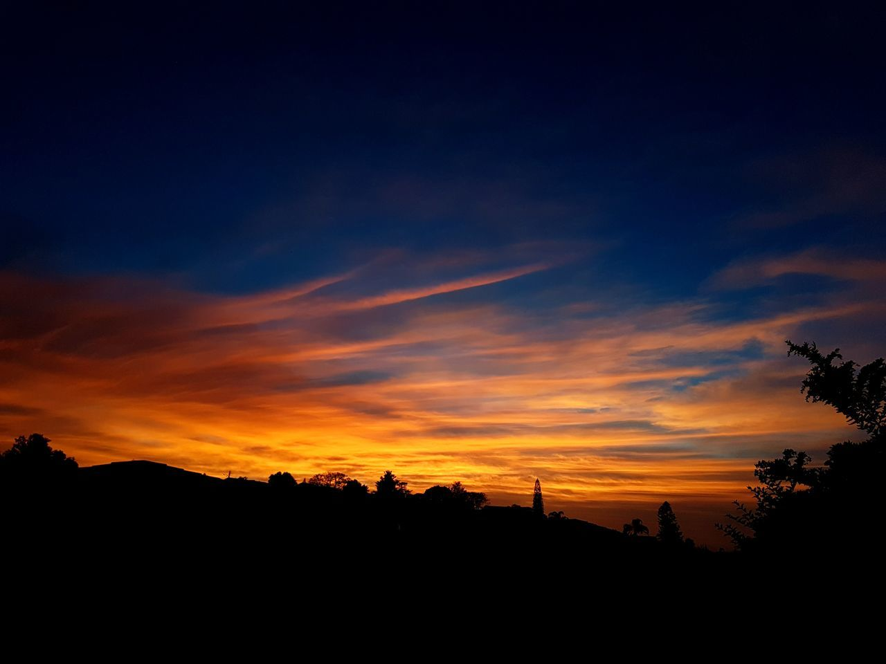 silhouette, sunset, orange color, nature, beauty in nature, tranquil scene, tree, no people, sky, scenics, tranquility, landscape, outdoors