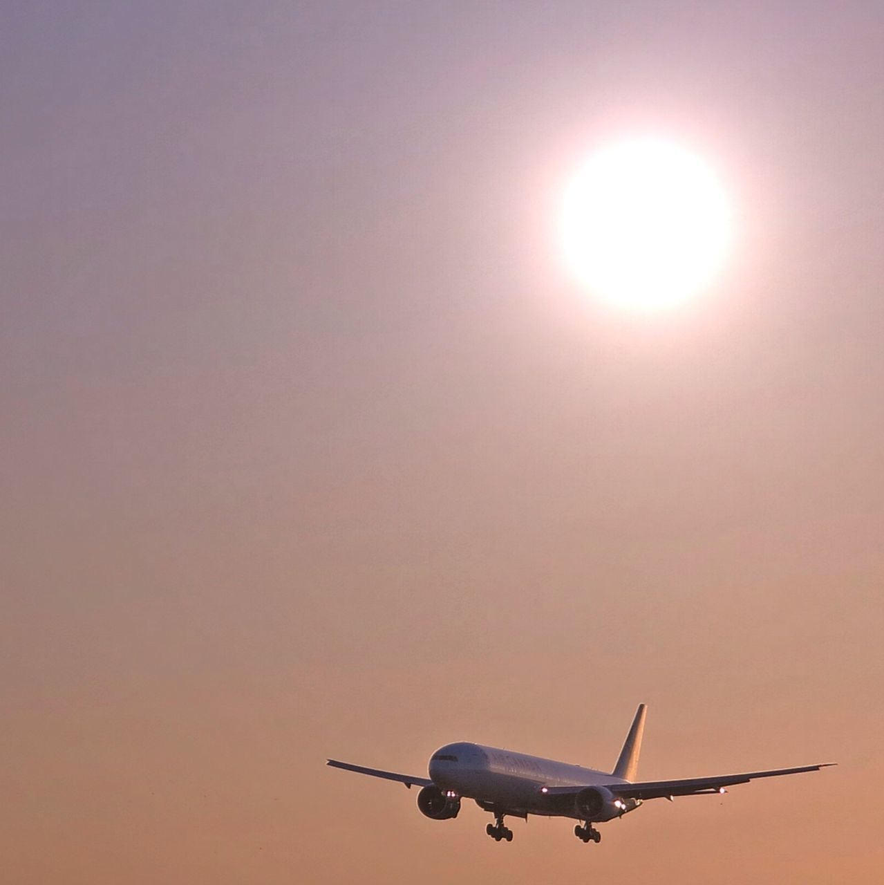 sun, airplane, sunset, transportation, journey, travel, flying, sunlight, sky, silhouette, clear sky, low angle view, air vehicle, no people, outdoors, day