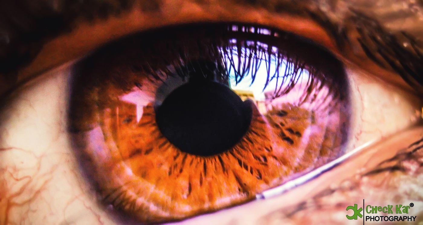 I LOVE PHOTOGRAPHY Check Kar Photography Macro Photography EyeEm Best Shots Eye Em Best Shots Eye Rights Reserved By Check Kar Photography