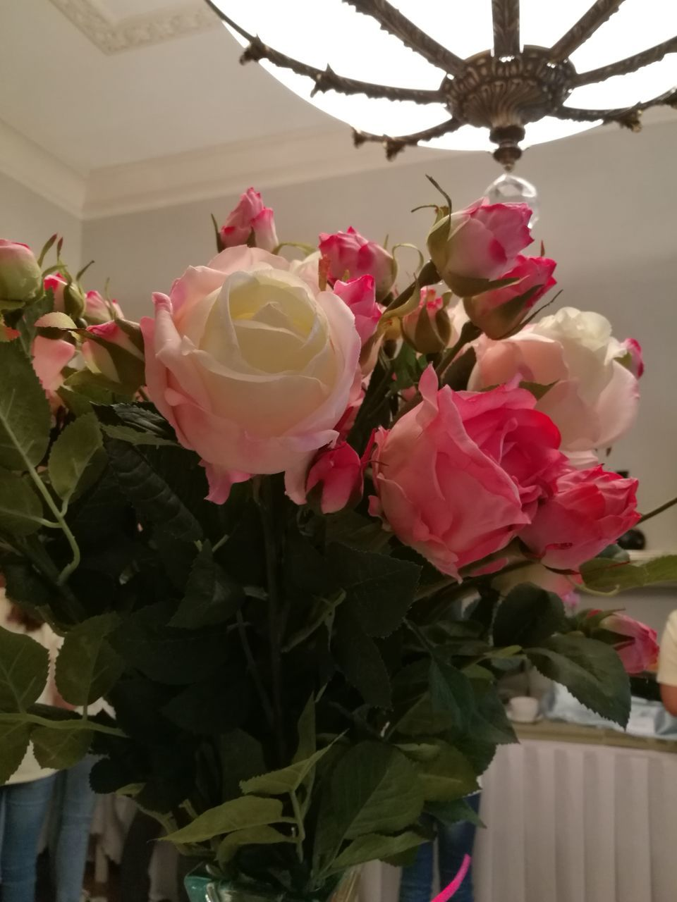flower, petal, beauty in nature, rose - flower, nature, pink color, fragility, no people, flower head, growth, freshness, close-up, leaf, plant, blooming, day, indoors