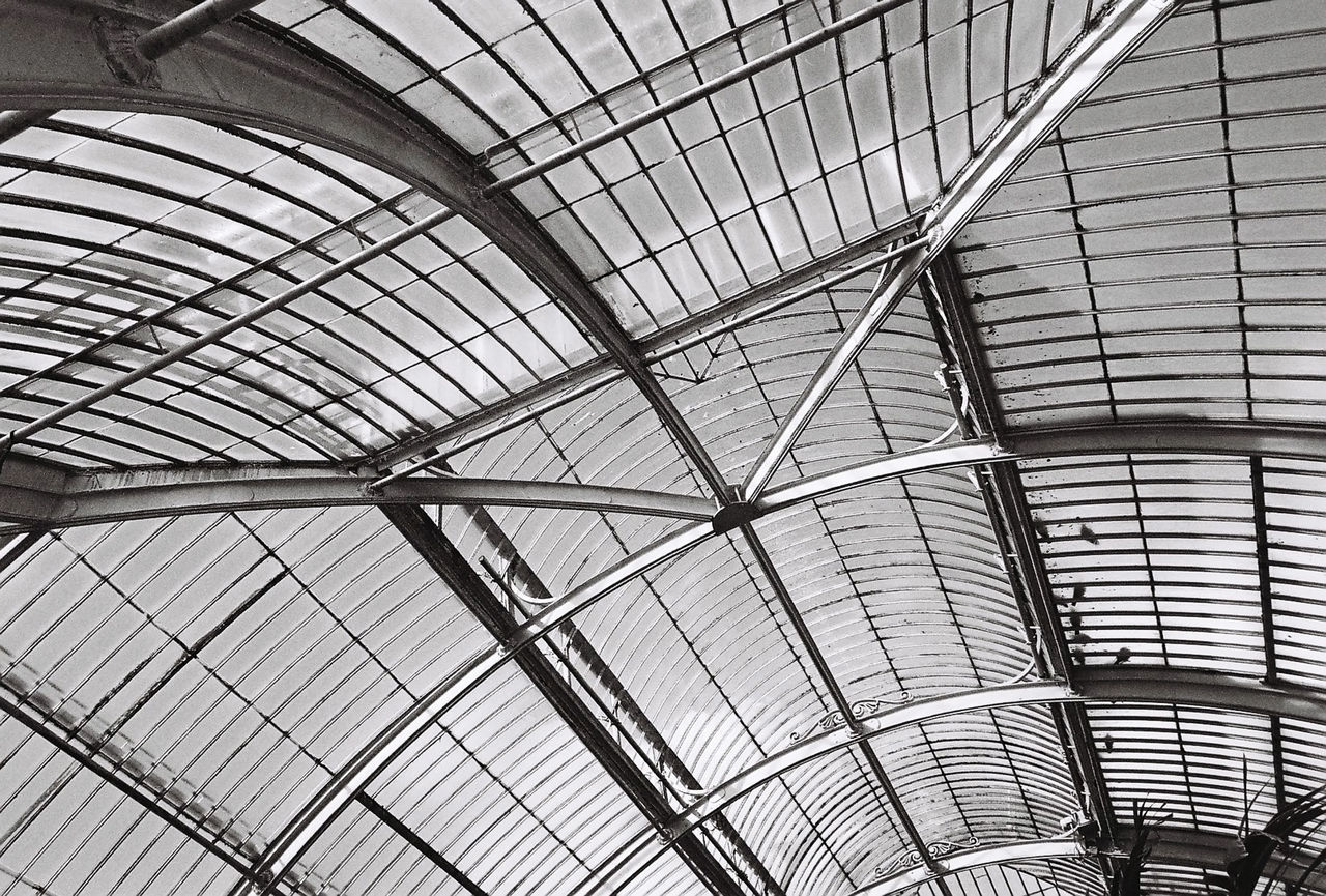 35mm Film Analogue Photography Black & White Engineering Glass Greenhouse Ironwork  Kew Gardens PalmHouse Roof Victorian Wide Angle Windows