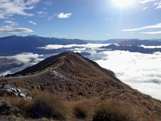 Amazing view over the clouds, i feel so small in this huge landscape !! Mountain Sunny Day Wildlife & Nature Tranquility Nature Nature Photography Wilderness Amazing View Likethekingoftheworld à Couper Le Souffle Otago Wanaka Roys Peak New-Zealand New Zealand