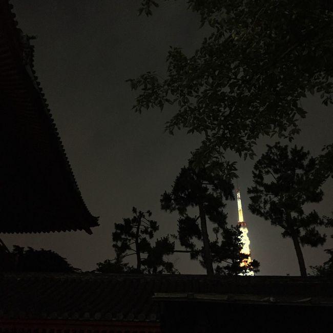 Tokyo Tower Zojojitemple Tokyo Japan Tokyo Night