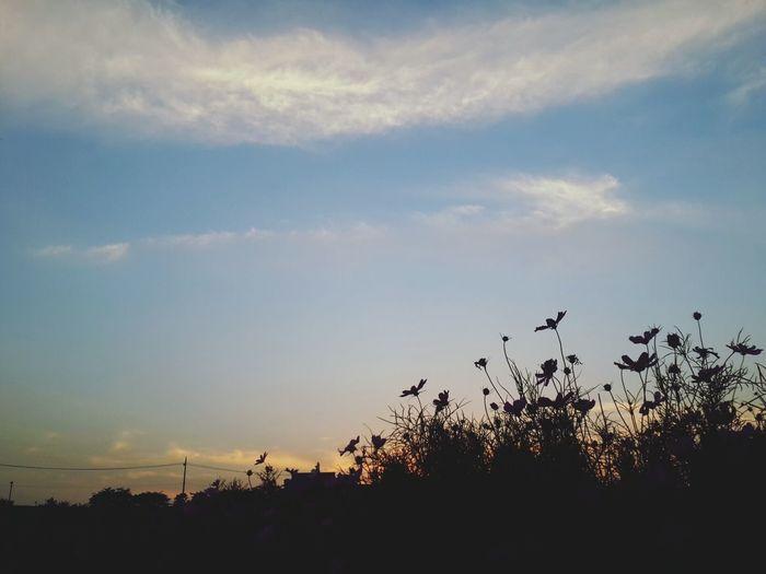 오랜만에 운동-! 완전 좋다 후! Exercising EyeEm Nature Lover Sky And Clouds