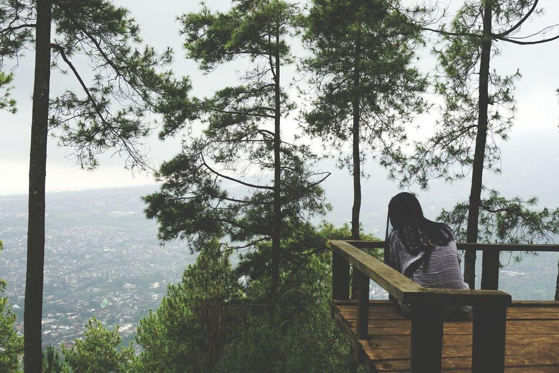 Paralayangbatumalang Nature Tree RelaxationSitting BeautyfullIndonesia