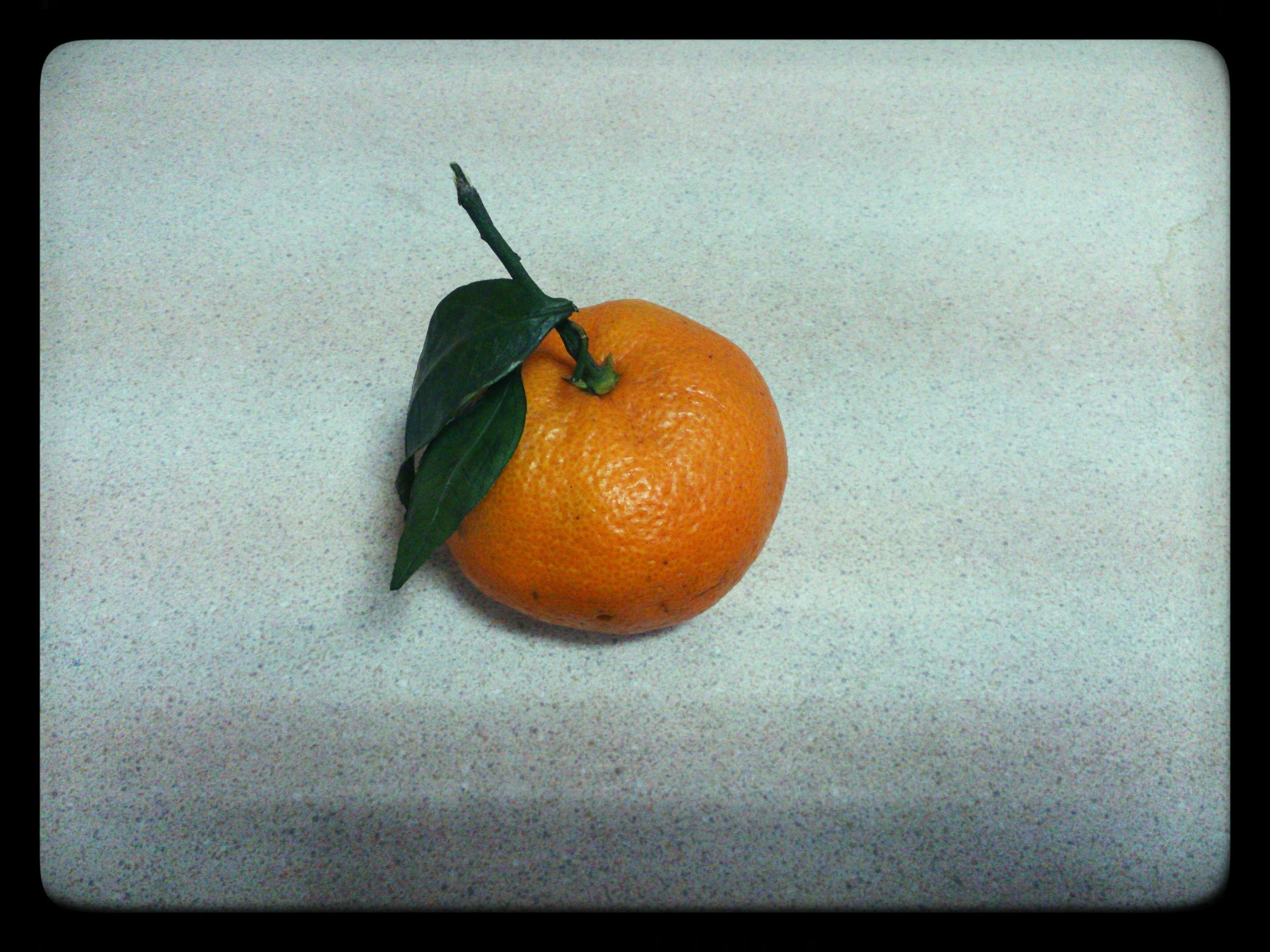 transfer print, food and drink, auto post production filter, indoors, food, fruit, healthy eating, orange color, close-up, still life, table, freshness, single object, no people, red, ripe, vignette, studio shot, high angle view, copy space