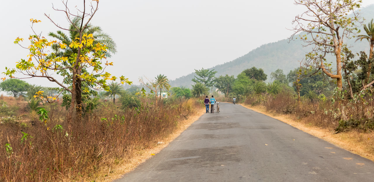A company Company Composition Country Road Countryside Day Hillside Incredible India India Landscape Leading Outdoors Perspective Relaxing Moments Road Road Marking Vanishing Point Walking Around