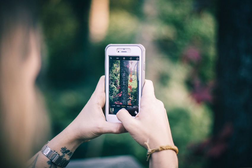 Capture The Moment Cell Phone  Holding Image Images IPhone IPhoneography Mobile Phone Mobilephotography Nature Person Phone Phone Photography Phones Photo Photo Taking Photographing Photography Photos Pictures Smart Phone Taking Photos Technology Using Phone Woods