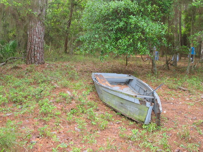forgotten history Abandoned Beauty In Nature Boat Damaged Day Discard Forest Green Color Growth Mode Of Transport Nature Nautical Vessel No People Non-urban Scene Obsolete Old Outdoors Scenics Tranquil Scene Tranquility Transportation Tree Tree Trunk WoodLand
