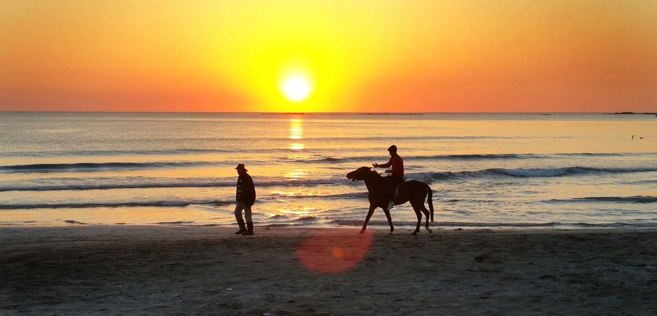 Sunset Sea Horizon Over Water Beach Domestic Animals Horse Scenics Beauty In Nature Riding Nature Outdoors Animal Themes People Silhouette Travel EyeEm EyeEm Nature Lover EyeEm Best Shots Seascape Sea And Sky Landscape Animal Wildlife Working Animal Sunset_collection Horselove