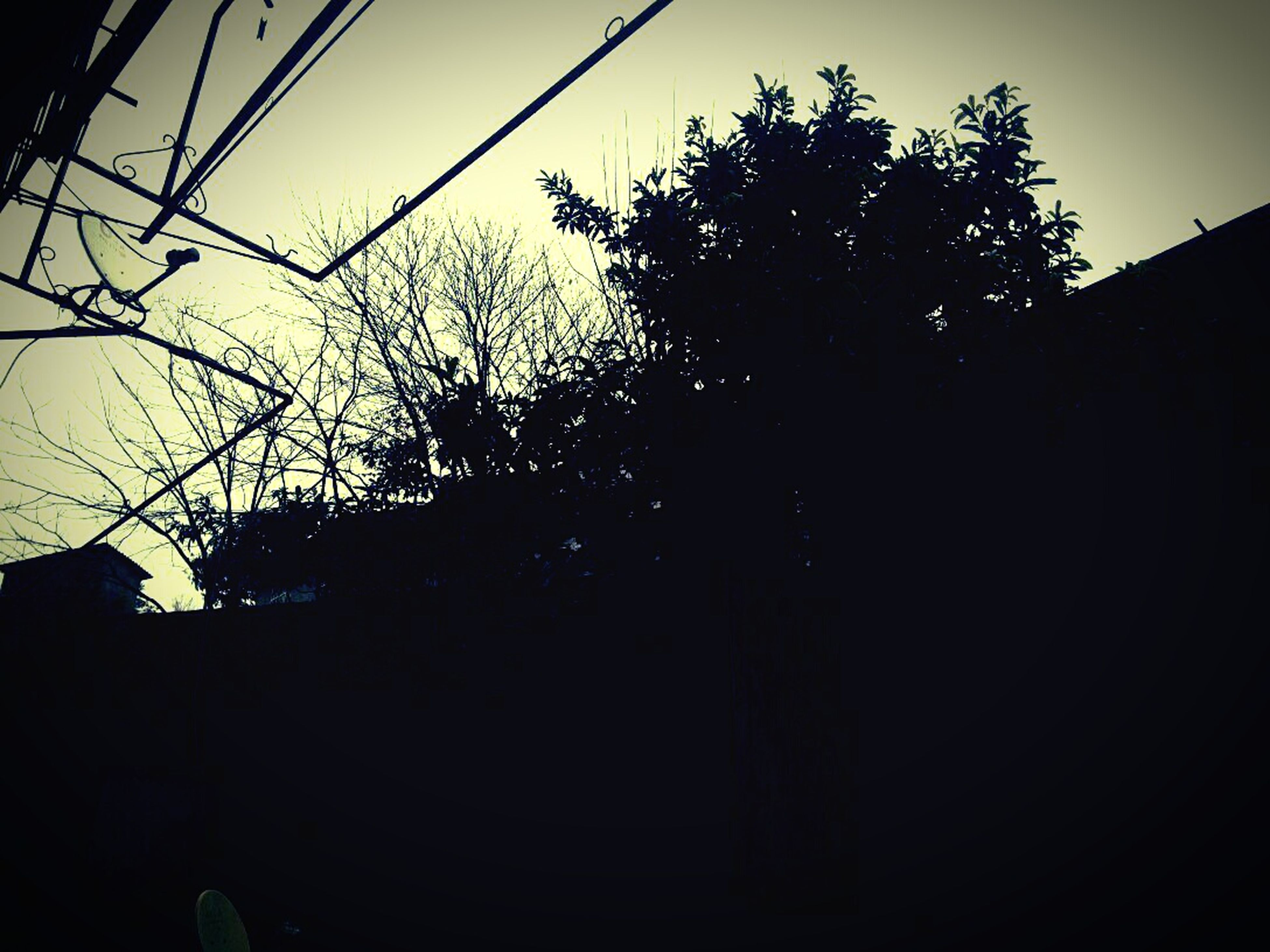 silhouette, tree, low angle view, built structure, architecture, building exterior, sky, power line, clear sky, dusk, electricity pylon, sunset, house, cable, outdoors, dark, electricity, no people, building, outline