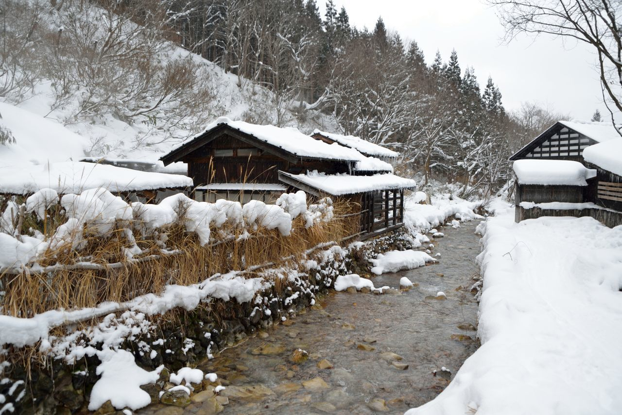 Snow covered onsen (hot spring) in rural Akita prefecture, Japan. Akita Architecture Beauty In Nature Built Structure Cold Temperature Covered Covering Deep Snow Frozen Hot Spring House Japan Landscape Mountain Nature Onsen Scenics Season  Snow Snow Covered Tranquility Tree Weather White Color Winter
