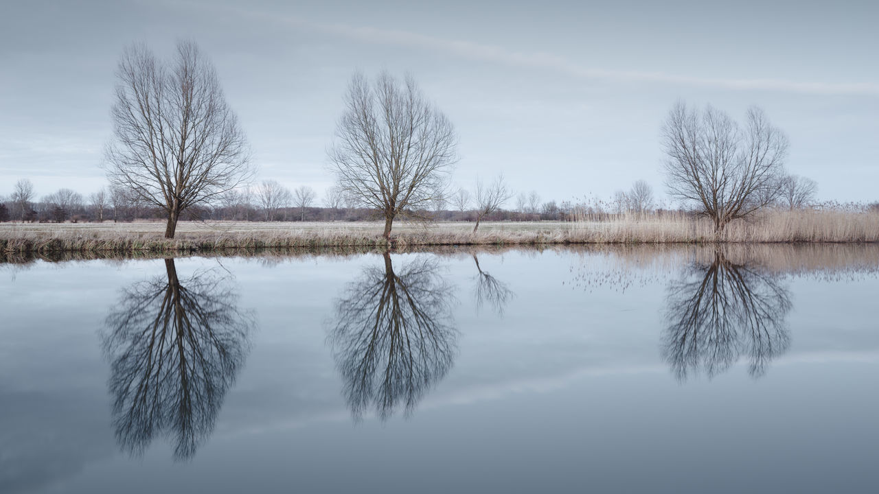 barren trees on a field at havelland, brandenburg germany Bare Tree Barren Landscape Barren Trees Beauty In Nature Brandenburg Day Germany Havelland Lake Landscape Nature No People Outdoors Philipp Dase Reflection Reflections In The Water Scenics Sky Snow Symmetry Tree Water Winter Winter Landscape Winter Trees