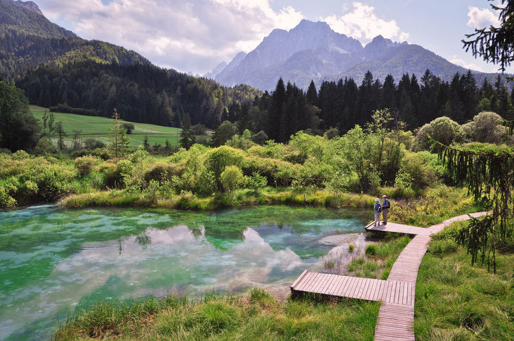 Zelenci Lake Zelenci Green Lake Mountain View Mountain Italy Skiing Resort Water Kranjska Gora Adventure Hiking Hike Travel Turism Slovenia Green Mountains Adventure Club Original Experience Feel The Journey My Favorite Place People And Places The Color Of Sport