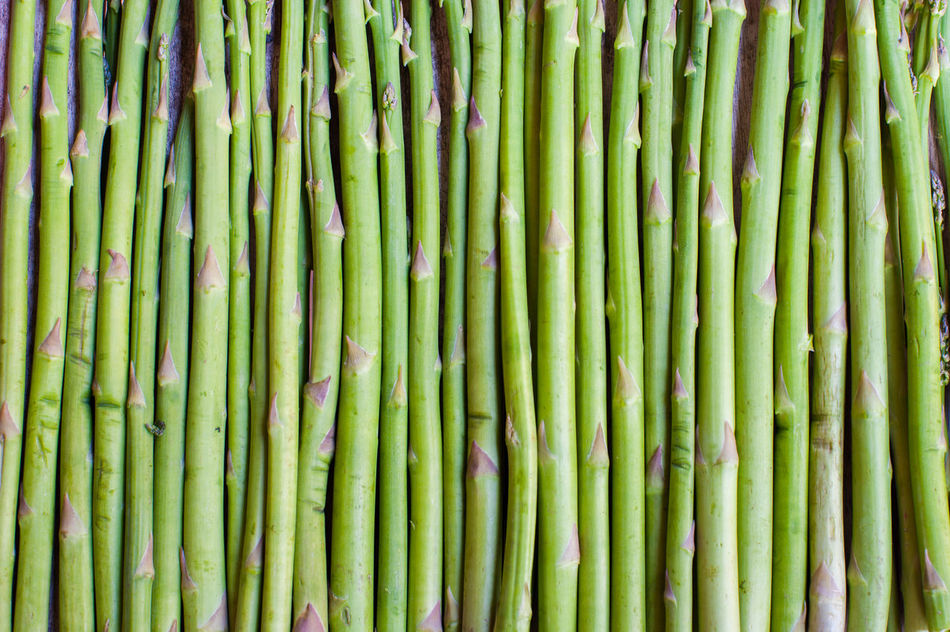 Beautiful stock photos of roma, Asparagus, Detail, Extreme Close Up, Food And Drink