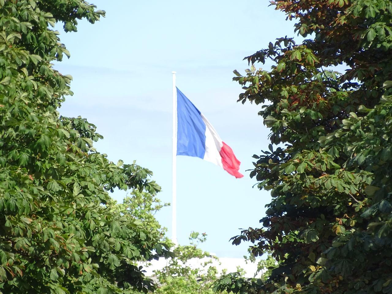 Bleu Blanc Rouge Drapeau Drapeau Bleu Blanc Rouge Flag French Flag Patriotism Sky Tree Waving