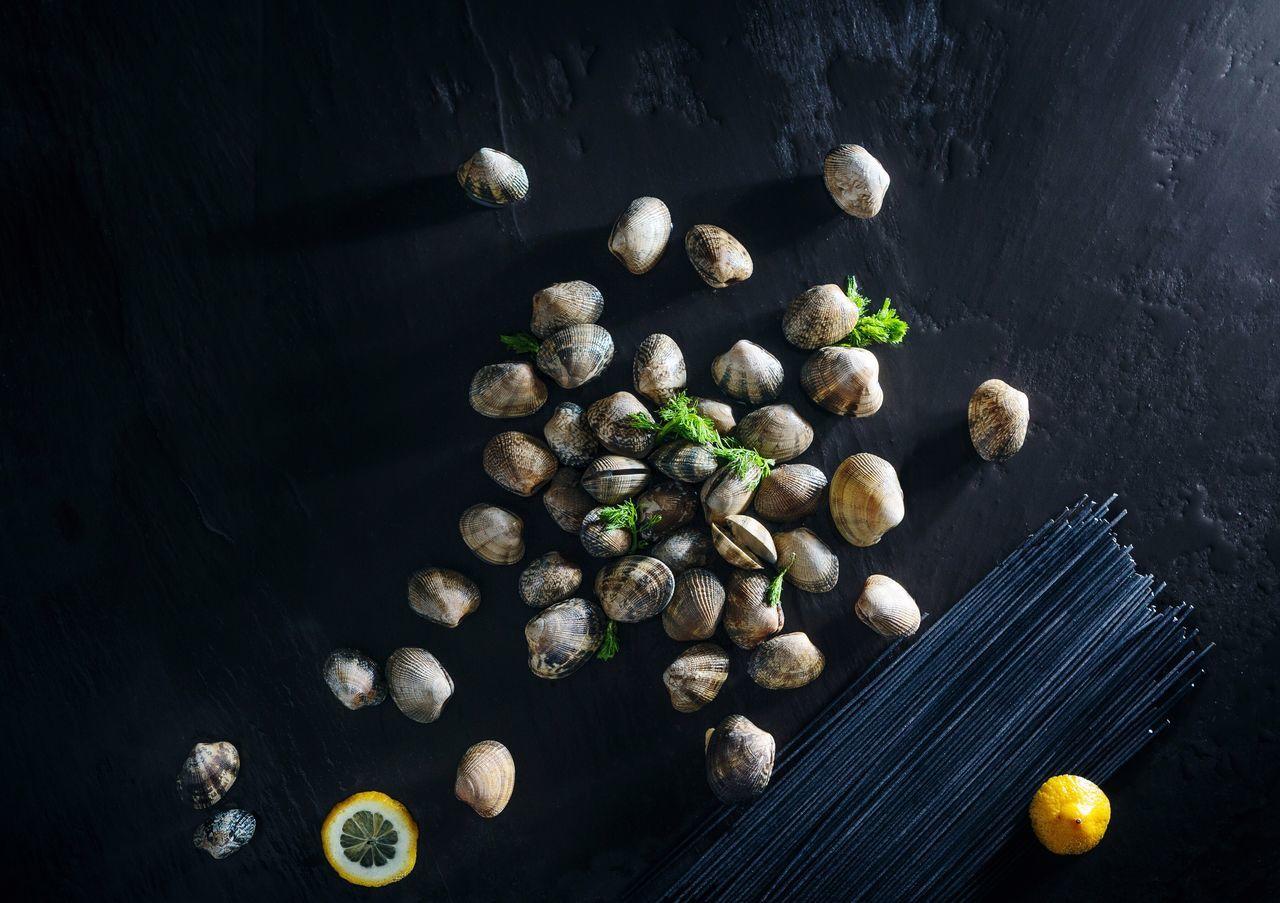 High Angle View Of Sea Shells