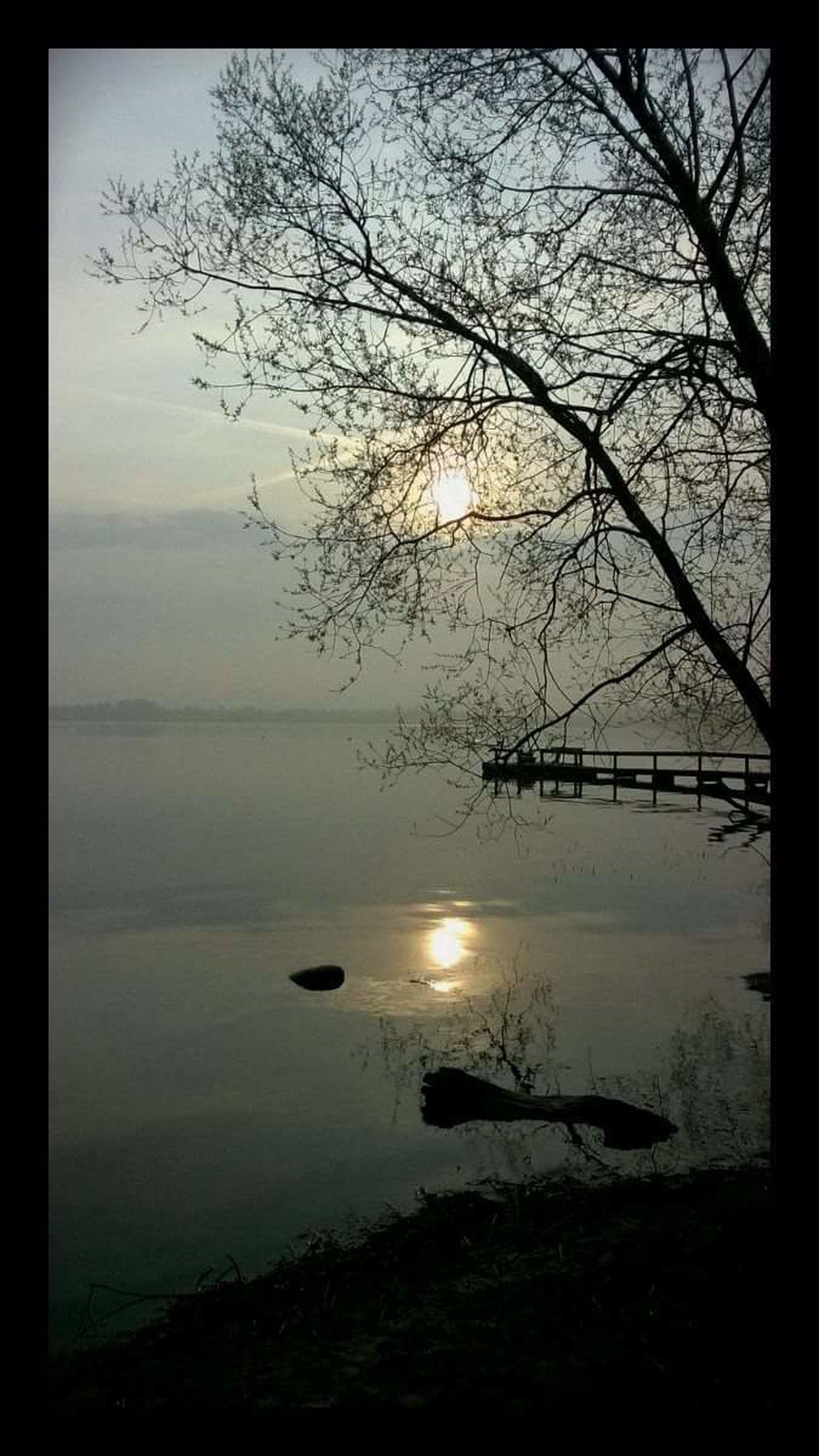 Reflection Water Scenics Lake Lake View Beauty In Nature Tranquility Nature Sky Day Outdoors Tree Denmark 🇩🇰 Danmark Furesø EyeEm EyeEm Nature Lover watCloud - Sky Clouds Overskyet Sø Morgen Morning Light Sunlight