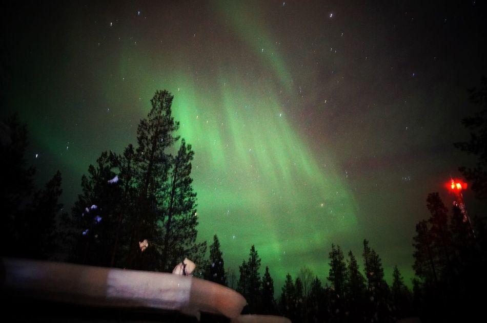 オーロラ フィンランド Levin Finland Kittira Aurora Nature