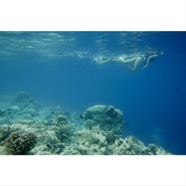 Вот так я увлеченно смотрю подводный мир на Мальдивах  Мальдивы Maldiwes Diving Blond coolgirl holidays awesome followme