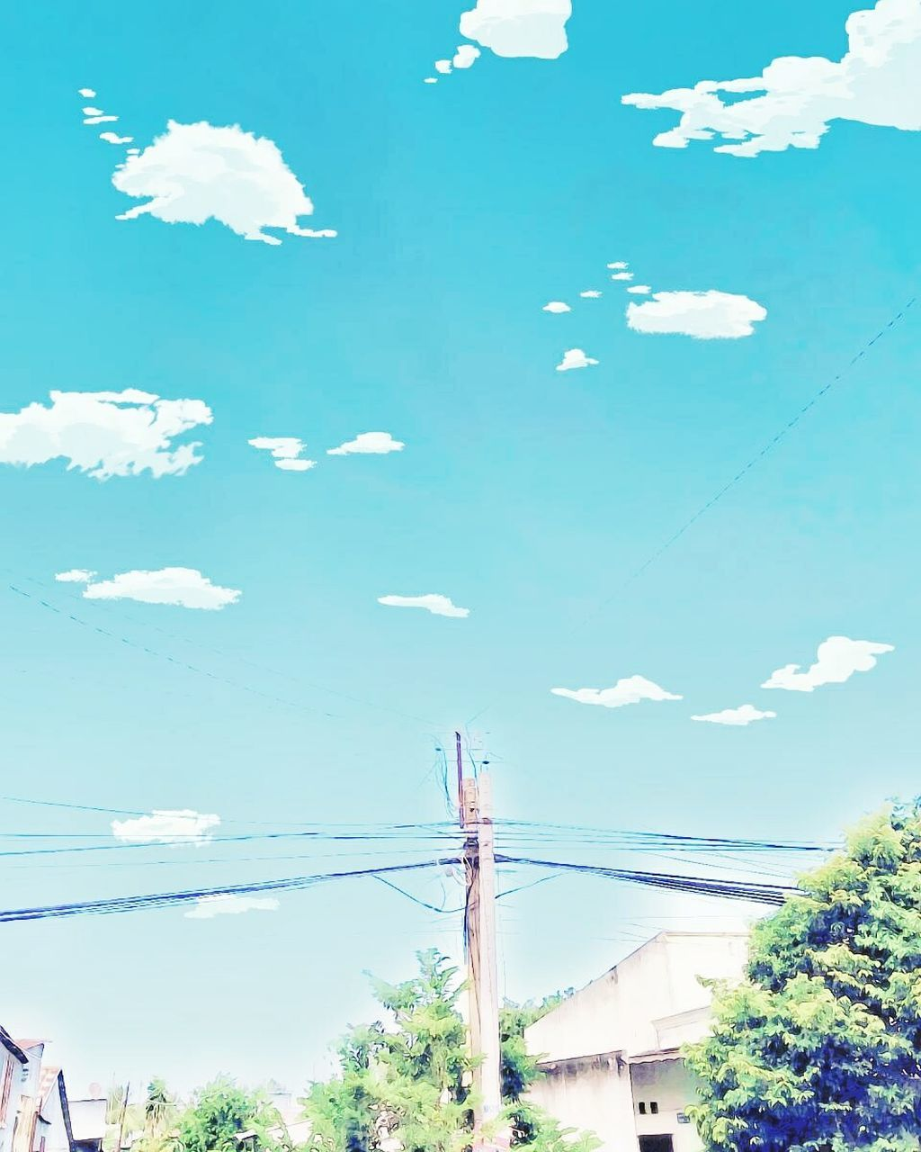 sky, day, connection, cable, cloud - sky, no people, tree, outdoors, low angle view, built structure, architecture, building exterior, nature