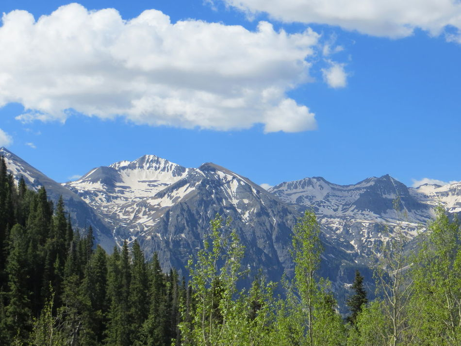 Mountains of Telluride Adventure Beauty In Nature Blue Cloud - Sky Colorado Day Forest Landscape Mountain Mountain Range Nature No People Outdoors Range Scenery Scenics Sky Snow Telluride Tranquility Tree