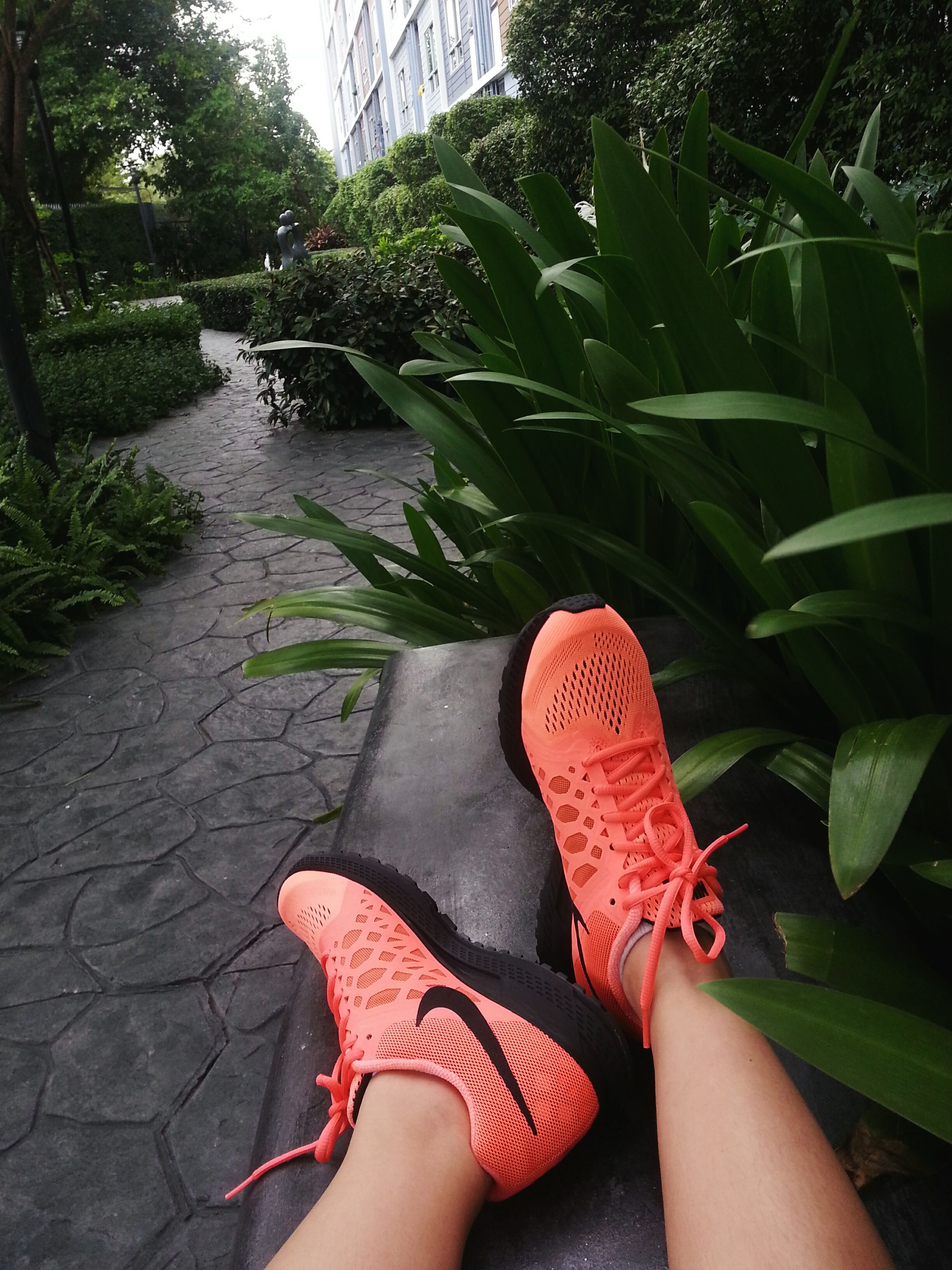 personal perspective, low section, person, leisure activity, lifestyles, human foot, unrecognizable person, part of, leaf, red, plant, nature, standing, shoe, barefoot