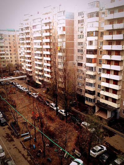 """Зима"" ( First Eyeem Photo"