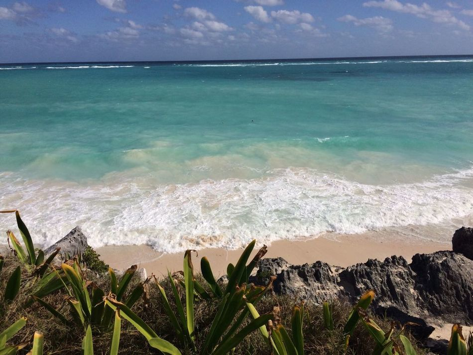 Playa Sea Beach Horizon Over Water Water Nature Sand Outdoors Beauty In Nature Travel Destinations Sky Wave No People Scenics Day CARIBBEANLIFE Tulum Beach Tulum , Rivera Maya. Mar Mexico Panoramic Landscape Paisajes Naturales Landscape_Collection Nature Landscape