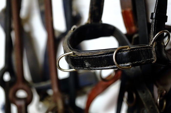 Horse tacks. Beautifully Organized Black And Brown Bridle Close-up Contrast Equestrian Eye4photography  EyeEm Best Shots Welcome To Black Headgear Horse Tack In Order Indoors  Leather Metal Neat No People Orderly Preparation  Stable Straps Stripes Pattern Tack Tidy Vertical
