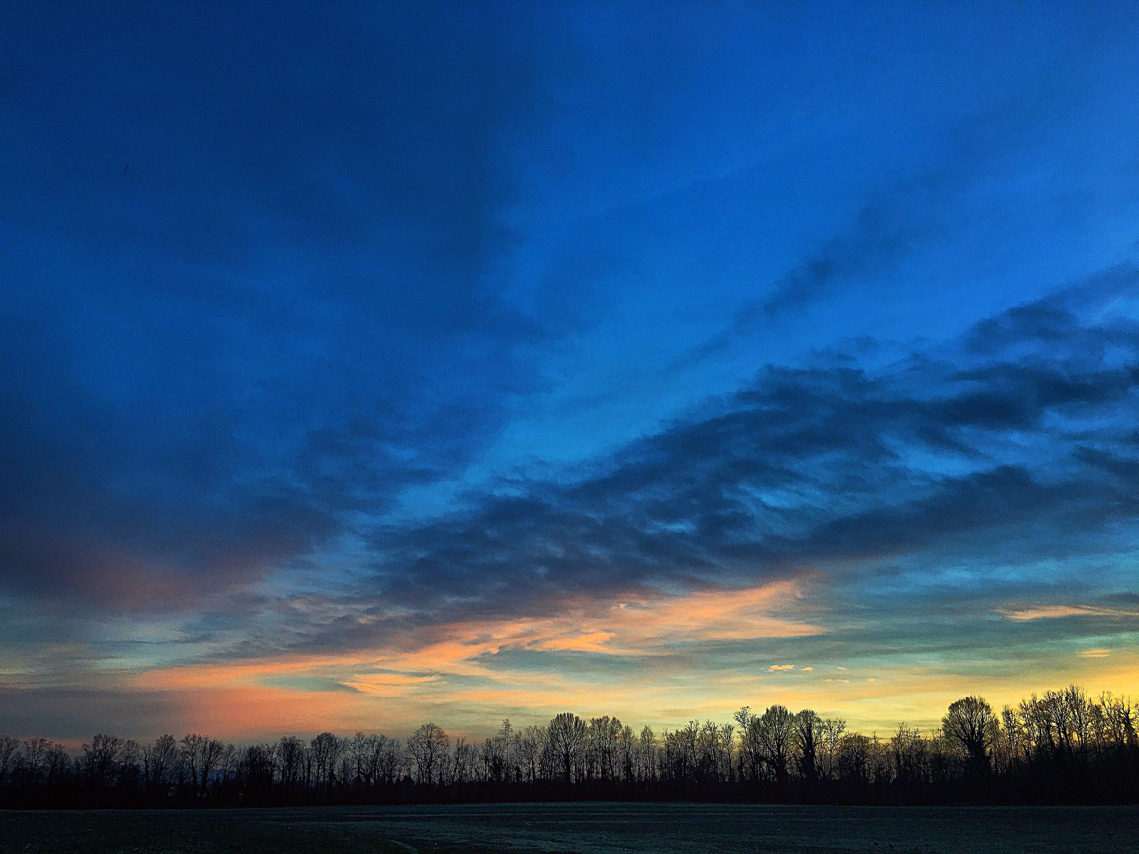 sky, blue, nature, tranquil scene, silhouette, scenics, beauty in nature, astronomy, dramatic sky, tranquility, no people, outdoors, sunset, tree, night, cloud - sky, space, milky way, star - space, galaxy