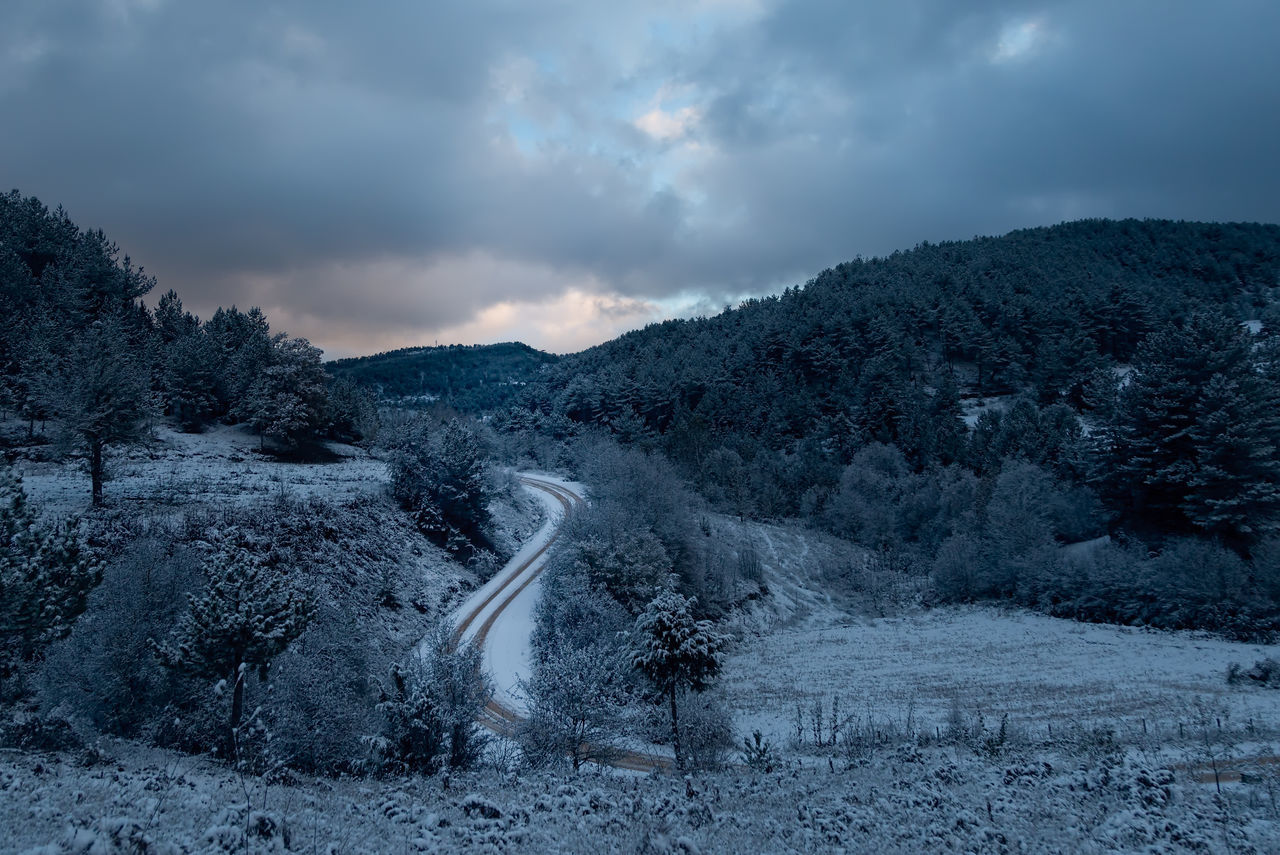 Winter in Bolu Beauty In Nature Blue Cold Temperature Day Dirt Road Hills And Valleys Hillside Icy Landscape Nature No People Outdoors Paths Pathway Pinaceae Sky Sky And Clouds Snow Snowy Mountains Tree Trees And Sky Winding Path Winding Road Winter Trees Wintertime