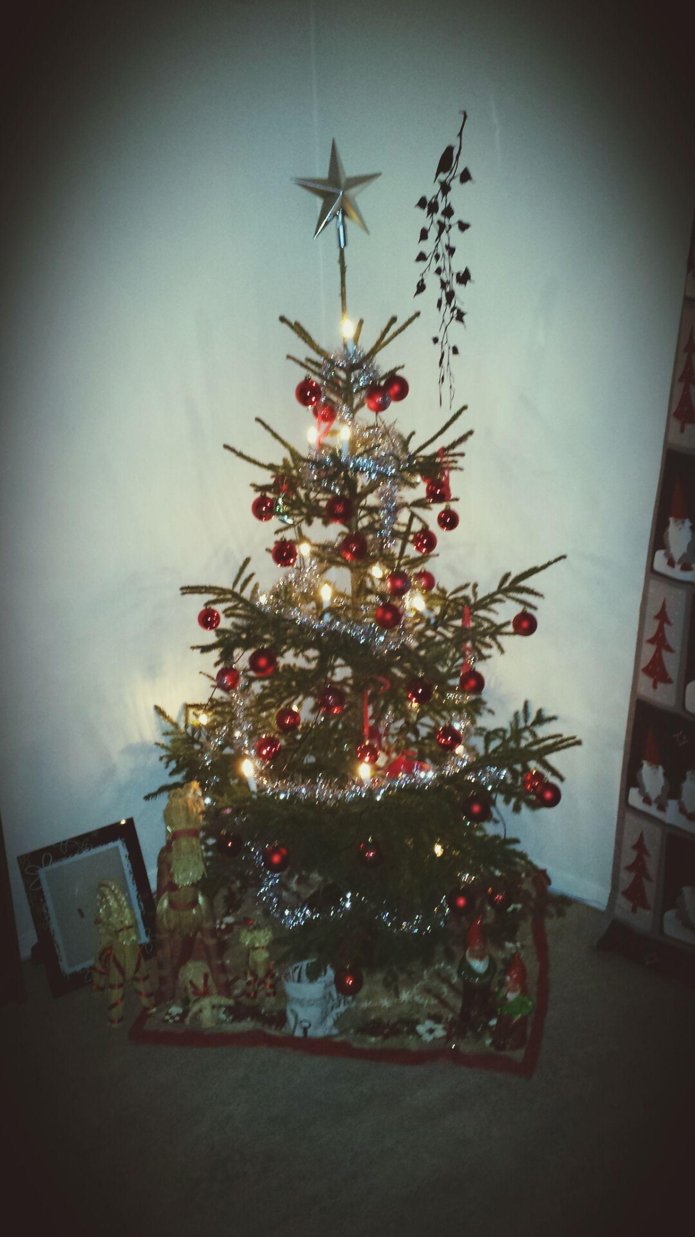 Julgranen är klar... happy★