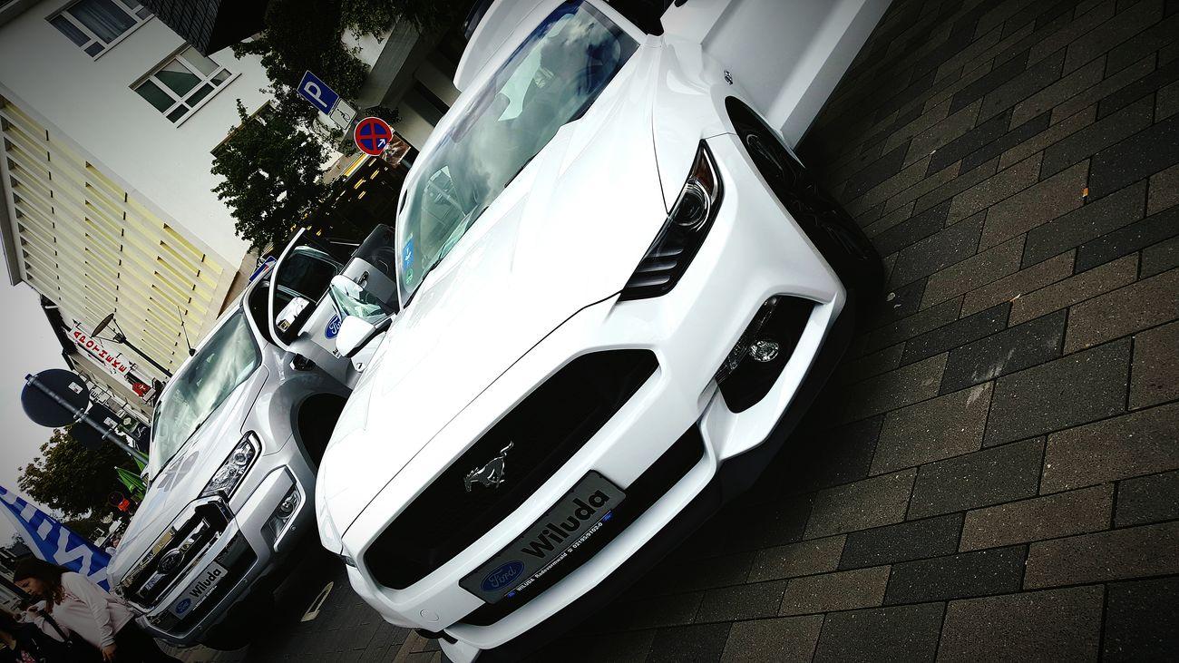 *-* Car Auto Ford Mustang Cars Car Love ❤️ Car Love <3 Car Lover Automobile Mustang GT Mustang Mustang Love