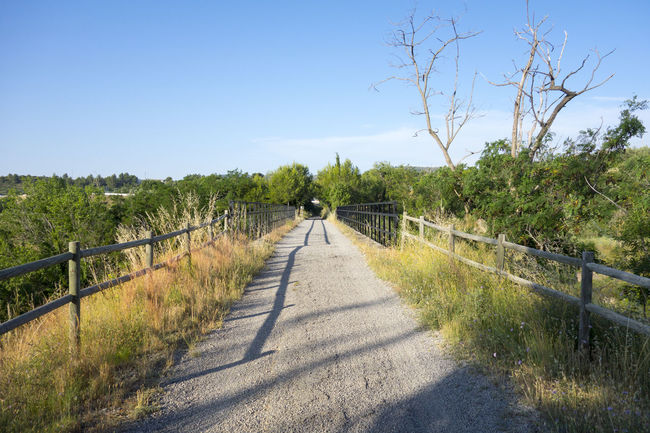 Bike Castellón Clear Sky Cycling Day Full Length Grass Greenway Landscape Nature Nature Ojos Negros One Person Outdoors Railing Road Scenics Sky SPAIN The Way Forward Tree València Via Verde Walking Way