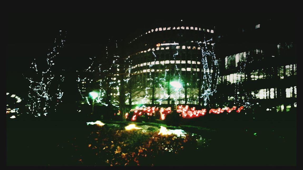 Enjoying The Sights Relaxing Illuminated Bright Lights Enjoying Life Hello World Illimination
