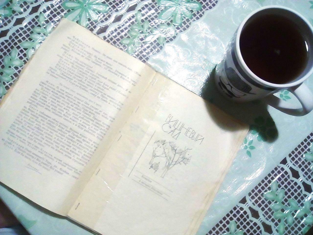 вечер за книгой русская литература вишневый сад чаек классика Buch Love