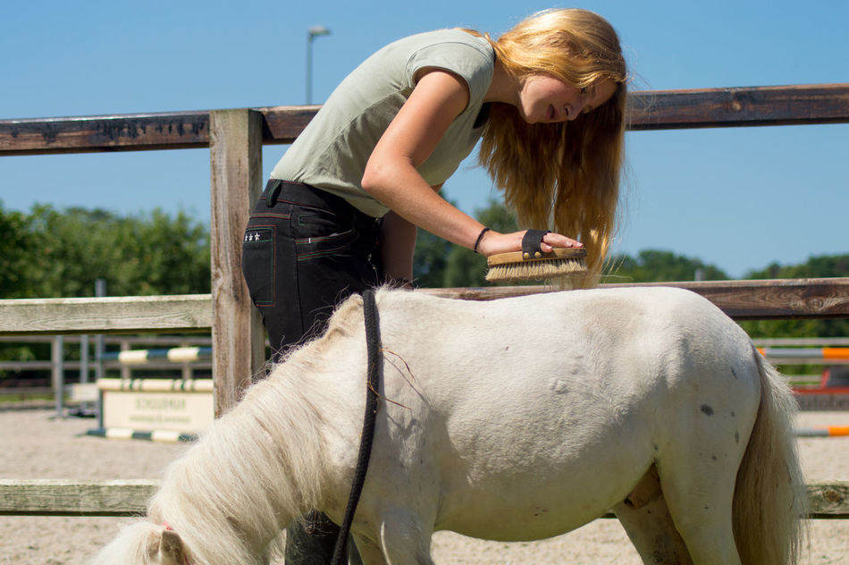 Beautiful stock photos of pony, 14-15 Years, Activity, Adolescence, Affectionate
