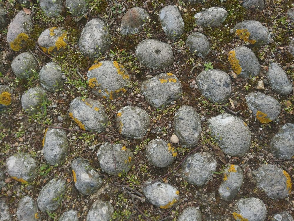 Full Frame Backgrounds No People Close-up Outdoors Day Nature Beauty In Nature Lichen Stones Regular