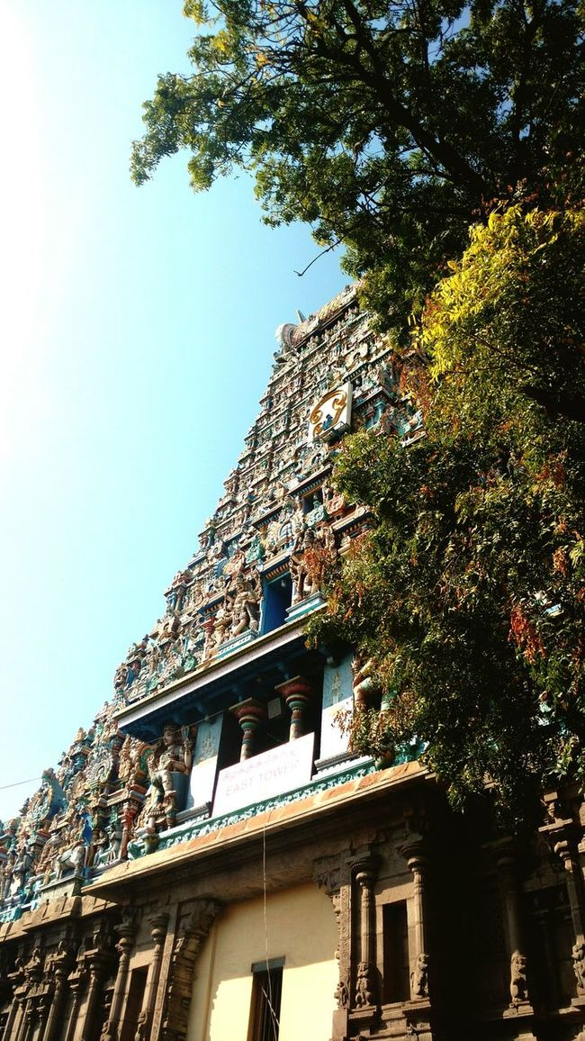Building Exterior Built Structure Architecture Low Angle View Tree Window Clear Sky Residential Structure Residential Building City Blue Architectural Feature Day Growth High Section Outdoors No People Sky Green Color Temple - Building Temple Architecture Templephotography Temple Square Templedome Templeofheaven