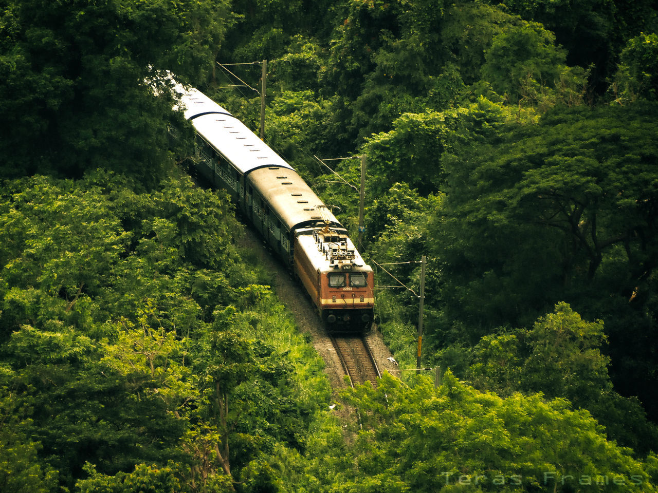 Train_of_our_world Moving Forwards In Nature