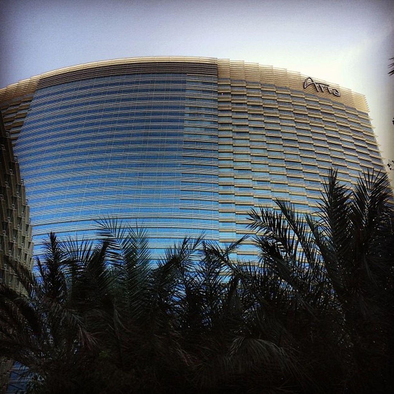 Aria Las Vegas Ariahotel Ariapool Pool Travel SinCity USA Swim Nevada Swimmingpool Vegas  Aria Lasvegas Honktravel