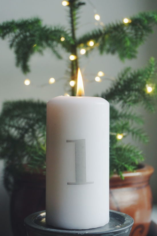 First sunday in advent Tree Illuminated No People Flame Close-up Burning Christmas Indoors  Day Sky Advent Light Christmas Ornament Advent Season Christmas Lights Advent Candle Advent First Sunday Of Advent Christmas Decoration Christmastime Christmas Around The World Celebration Christmas Flower Candles Beauty In Nature Flower
