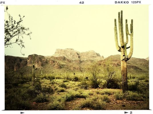 Hiking at Superstition Mountain by Father of Five